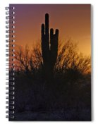 A Sonoran Morning  Spiral Notebook