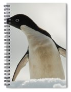 Adelie Penguin Spiral Notebook
