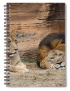 African Lion Couple 3 Spiral Notebook