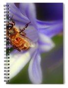 Agapanthus Africanus Spiral Notebook