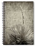Agave And Adobe Spiral Notebook
