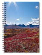 Alpine Landscape In Fall Spiral Notebook