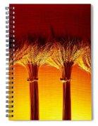 Amber Grains 2 Spiral Notebook