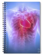 Anatomy Of The Chest Spiral Notebook