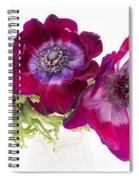 Anemone Trio Spiral Notebook