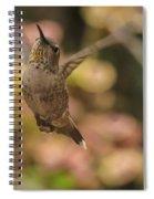 Anna's Hummingbird Spiral Notebook