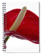 Anthurium Spiral Notebook