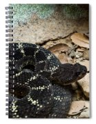 Arizona Black Rattlesnake Spiral Notebook