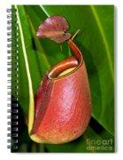 Asian Pitcher Plant Spiral Notebook