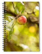 Autumn Apple Spiral Notebook