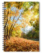 Autumn Fall Landscape In Forest Spiral Notebook