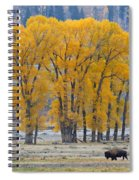 Autumn In The Lamar Spiral Notebook