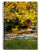 Autumn Pond 2013 Spiral Notebook