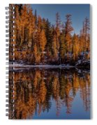 Autumn Reflected Spiral Notebook