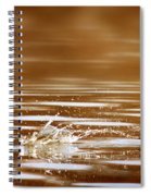 Away Quickly Spiral Notebook
