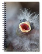 Baby Bird Spiral Notebook