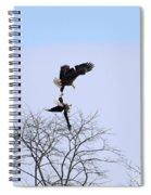 Bald Eagle Courtship Ritual  1338 Spiral Notebook
