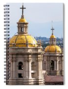 Basilica Towers Spiral Notebook