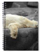 Bear On A Break Spiral Notebook