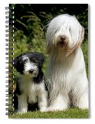 Bearded Collie And Puppy Spiral Notebook