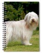 Bearded Collie Dog Spiral Notebook