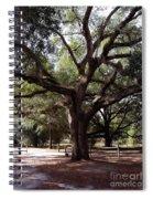 Beautiful Oak Spiral Notebook