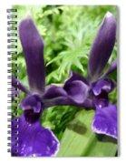 Beautiful Orchid Flower  Spiral Notebook