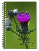Beauty Before Glory... Spiral Notebook