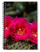 Beavertail Cactus Spiral Notebook