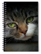 Behind Bars Spiral Notebook