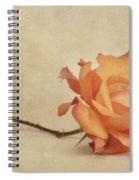 Bellezza Spiral Notebook