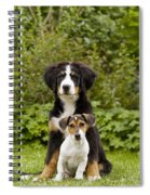 Bernese Mountain & Jack Russell Puppies Spiral Notebook
