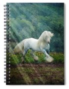 Billy Rays Spiral Notebook