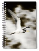 Bird Flying In The Clouds Spiral Notebook
