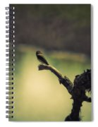 Bird Watching Spiral Notebook