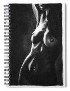 Bitter Sweet - Drawing Spiral Notebook