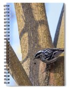 Black And White Warbler Spiral Notebook