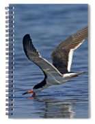 Black Skimmer Spiral Notebook