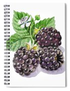 Artz Vitamins Series The Blackberries Spiral Notebook