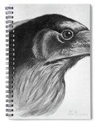 Blackburn Birds, 1895 Spiral Notebook