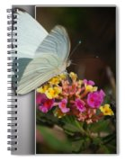Blank Greeting Card 3 Spiral Notebook