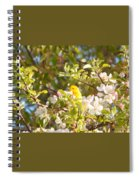 Blossom Time Spiral Notebook
