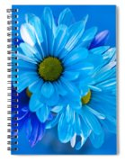 Blue Daisies In Vase Outdoors Spiral Notebook