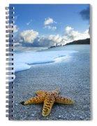 Blue Foam Starfish Spiral Notebook