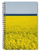 Blue Horizon Spiral Notebook