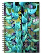 Blue Jade Plant  Hawaii, United States Spiral Notebook