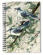 Blue Jays And Blossoms Spiral Notebook
