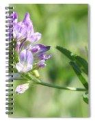 Blue Wild Flower Spiral Notebook