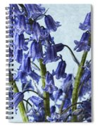 Bluebells 2 Spiral Notebook