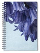 Bluebells 3 Spiral Notebook